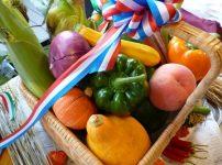 野菜 果物 カリウムの多い食品 カルシウムの多い食品 水毒に良い食品 ヒスタミンに良い食品
